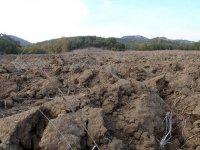 grunt rolny